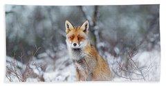 Red Fox Blue World Beach Towel by Roeselien Raimond