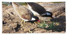 Red-wattled Lapwing Beach Towel by C H Apperson