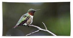 Ruby Throated Hummingbird Spotlight Beach Towel by Christina Rollo