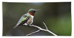 Ruby Throated Hummingbird Spotlight Beach Sheet by Christina Rollo