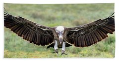 Ruppells Griffon Vulture Gyps Beach Sheet by Panoramic Images