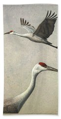 Sandhill Cranes Beach Sheet by James W Johnson