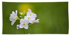 Soft White Cuckoo Flowers Beach Towel by Christina Rollo