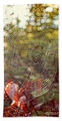 Spider Web Beach Towel by Edward Fielding