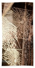 Spider Webs Beach Sheet by Anonymous