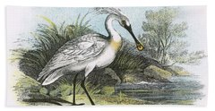Spoonbill Beach Towel by English School