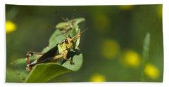 Sunny Green Grasshopper Beach Towel by Christina Rollo