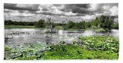 Swamp Beach Towel by Dan Sproul