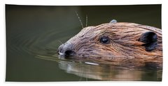 The Beaver Beach Towel by Bill Wakeley