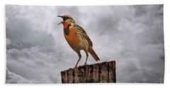 The Meadowlark's Song Beach Sheet by Elizabeth Winter