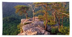 Trees On A Mountain, Buzzards Roost Beach Sheet by Panoramic Images