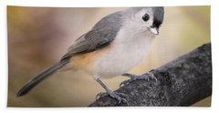 Tufted Titmouse Beach Towel by Bill Wakeley