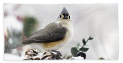 Tufted Titmouse In The Snow Beach Towel by Christina Rollo