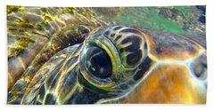 Turtle Eye Beach Towel by Carey Chen
