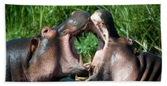 Two Hippopotamuses Hippopotamus Beach Sheet by Panoramic Images