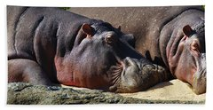 Two Hippos Sleeping On Riverbank Beach Towel by Johan Swanepoel