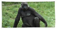 Western Lowland Gorilla Female Beach Towel by Gerry Ellis