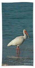 White Ibis Beach Towel by Cindi Ressler