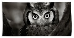 Whitefaced Owl Beach Towel by Johan Swanepoel