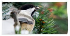 Winter Chickadee With Seed Beach Sheet by Christina Rollo