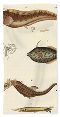 Wonderful Fish Beach Towel by German School
