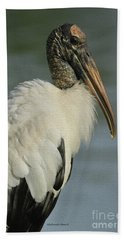 Wood Stork In Oil Beach Towel by Deborah Benoit