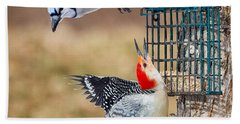 Woodpeckers And Blue Jays Square Beach Sheet by Bill Wakeley