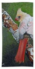 Young Cardinal  Beach Sheet by Ken Everett