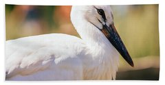 Young Stork Portrait Beach Towel by Pati Photography