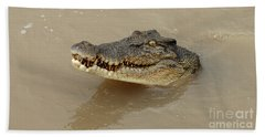 Salt Water Crocodile 3 Beach Towel by Bob Christopher