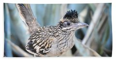 A Juvenile Greater Roadrunner  Beach Towel by Saija  Lehtonen