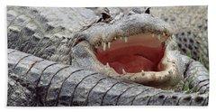 American Alligator Alligator Beach Towel by Tim Fitzharris
