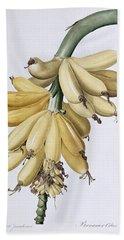Banana Beach Sheet by Pierre Joseph Redoute