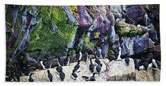 Birds At Cape St. Mary's Bird Sanctuary In Newfoundland Beach Sheet by Elena Elisseeva