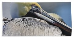 Brown Pelican Beach Towel by Adam Romanowicz
