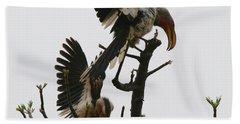 Hornbill Courtship Beach Sheet by Bruce J Robinson