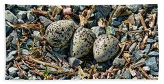 Killdeer Bird Eggs Beach Towel by Jennie Marie Schell