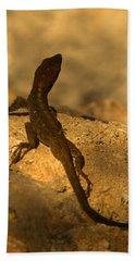 Leapin' Lizards Beach Towel by Trish Tritz