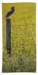 Meadowlark Singing Beach Towel by Randall Nyhof