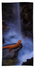 Newt Falls Beach Towel by Ron Jones