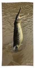Salt Water Crocodile Beach Towel by Bob Christopher