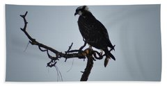 The Osprey Beach Towel by Bill Cannon