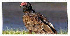 Turkey Vulture Beach Sheet by Robert Frederick