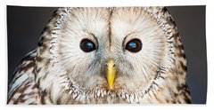 Ural Owl Beach Sheet by Tom Gowanlock
