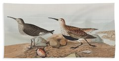 Red Backed Sandpiper Beach Towel by John James Audubon