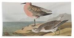 Red-breasted Sandpiper  Beach Towel by John James Audubon