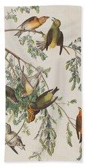 American Crossbill Beach Towel by John James Audubon