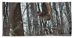 American Woodcock - Scolopax Minor Beach Towel by Asbed Iskedjian