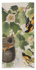Baltimore Oriole Beach Sheet by John James Audubon