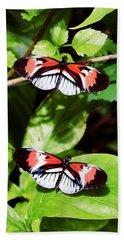 Butterflies Beach Sheet by Sandy Taylor
